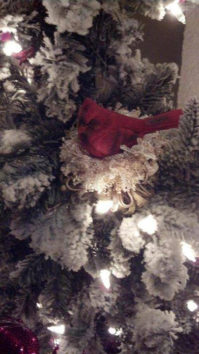 Cardinal Tassel in a Christmas Tree|classictasselsandmore.com