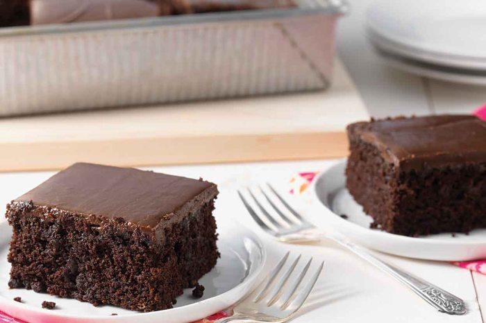 National Chocolate Cake Day: Which Cake Would You Bake?-Fudge Cake-KAF|classictasselsandmore.com