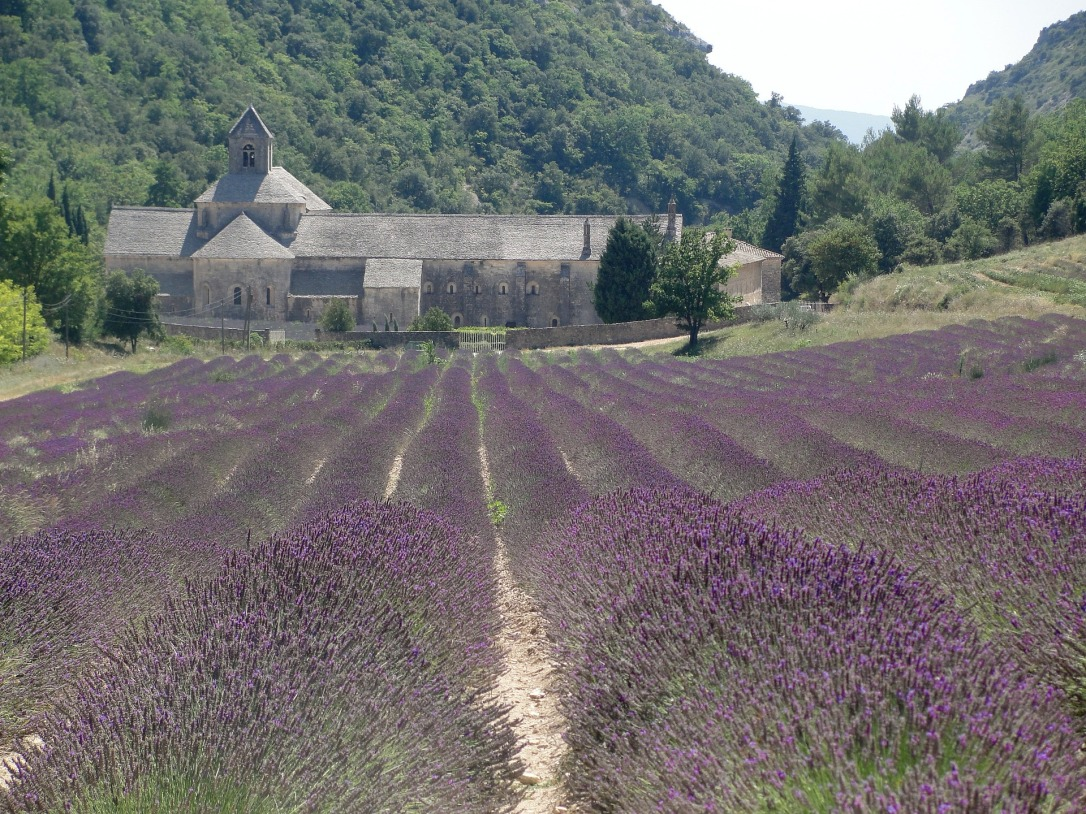 Tassels that Travel: We're Going Places in 2016-Provence|classictasselsandmore.com