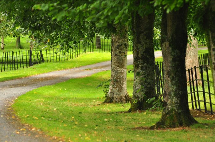 Home Tour: Glin Castle in County Limerick, Ireland22|classictasselsandmore.com