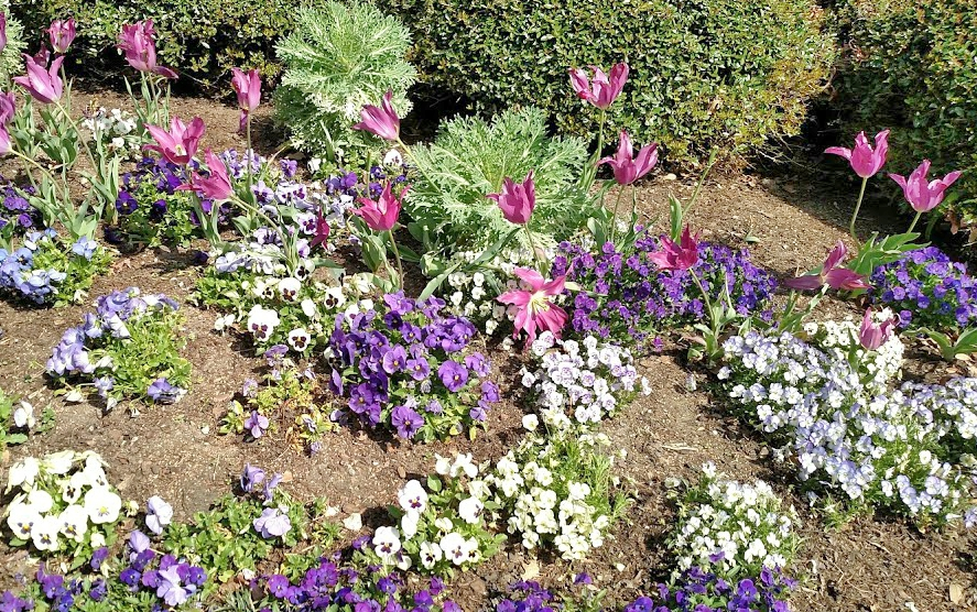 Signs of Spring5 classictasselsandmore.com
