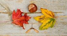 Our Top Ten Fall Decor Posts | www.classictasselsandmore.com